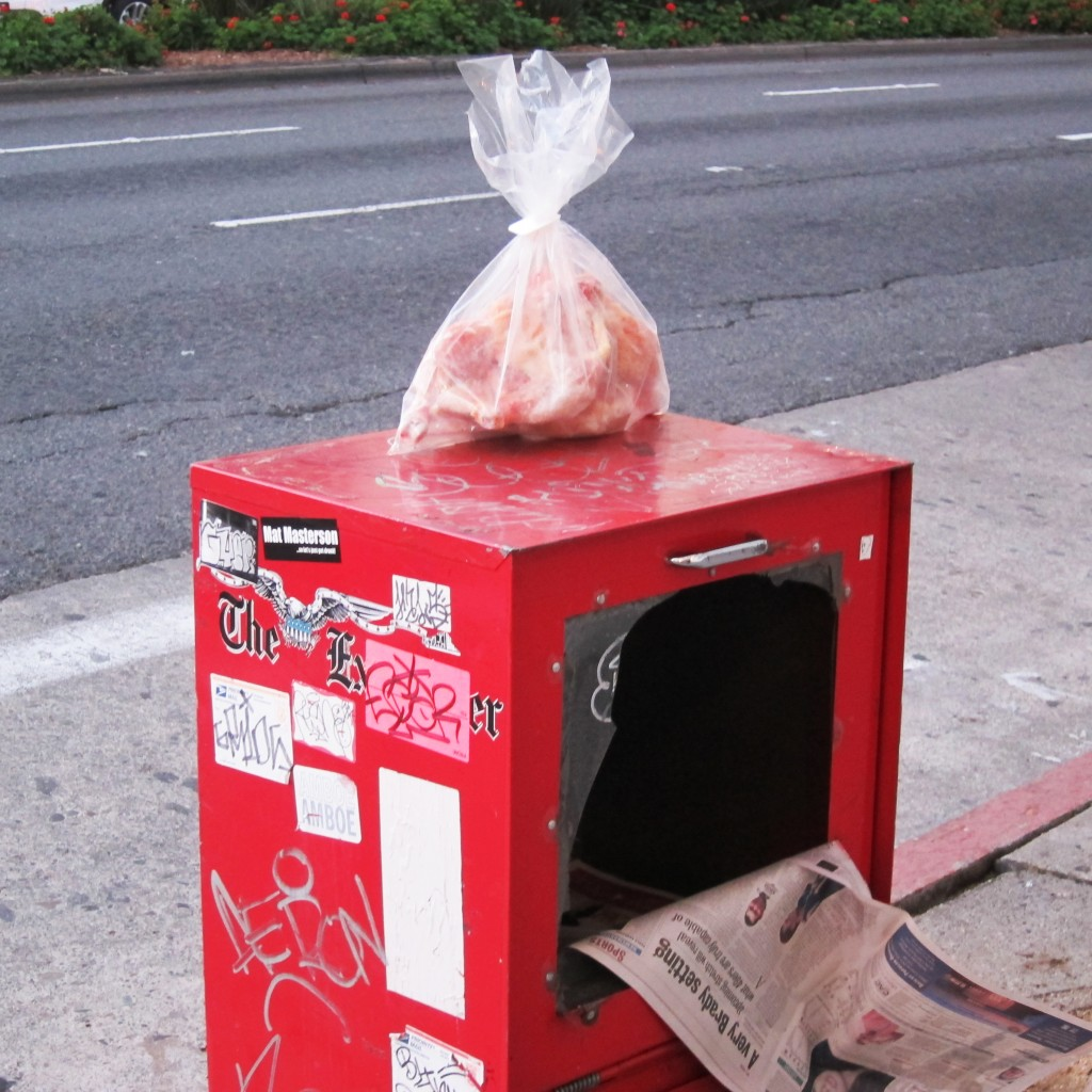 case of the bag of meat