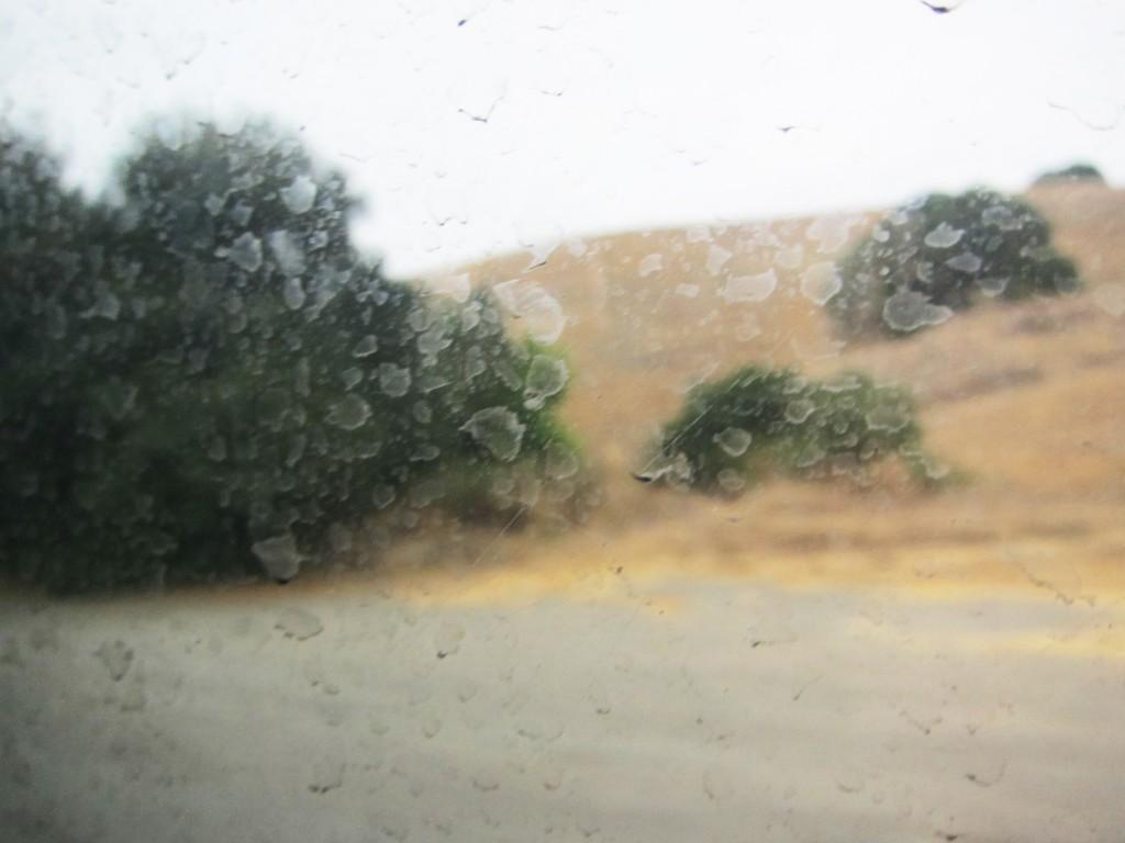 dirty bus window