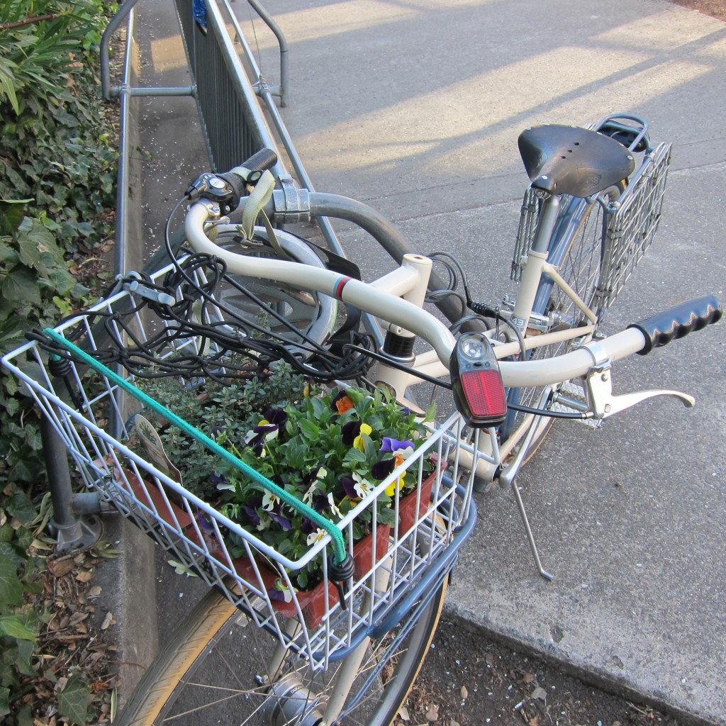 my handy bicycle