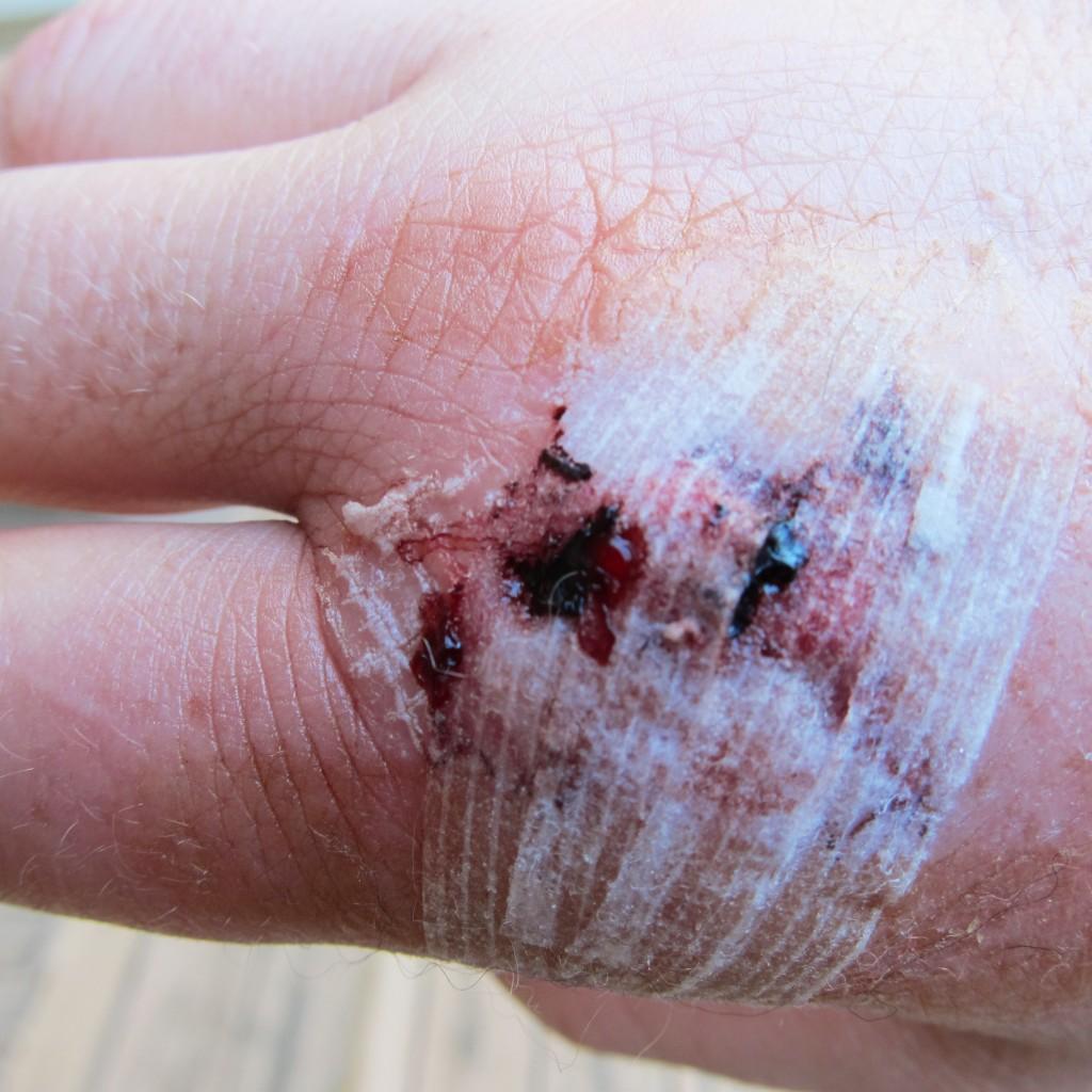gross cut 3