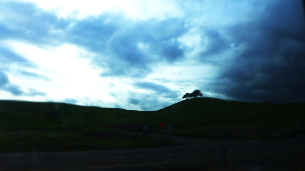 hills from bus
