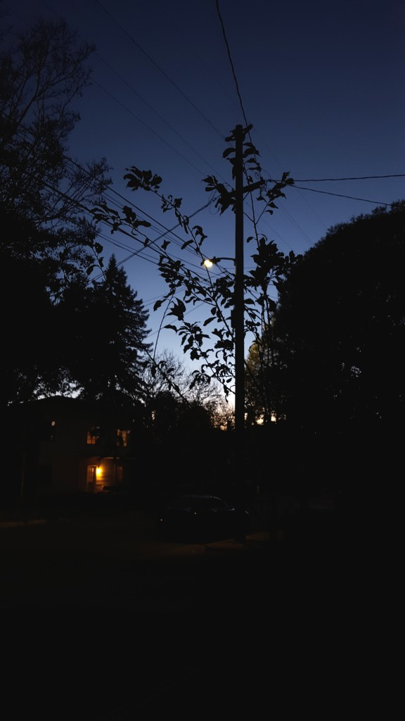 neighborhood at dusk